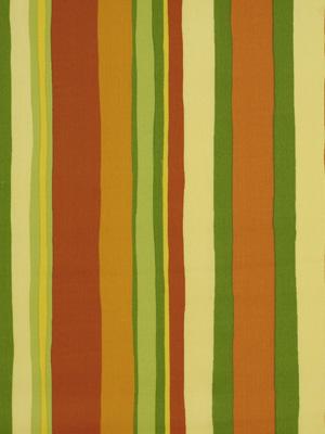 Robert Allen Striped Fabric