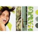 Save on Benjamin Moore Paint – Spring 2012