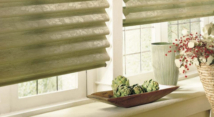 Hunter Douglas Vignette Roman Shade
