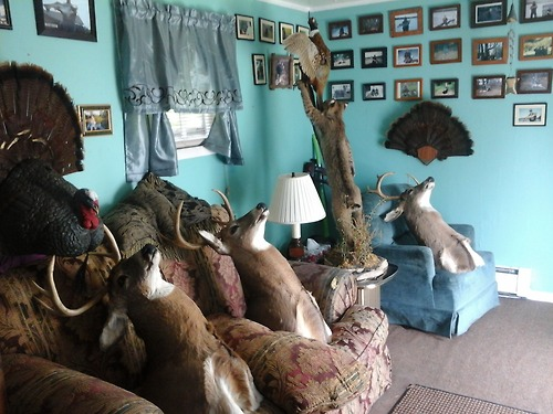 Image result for terrible home staging photos